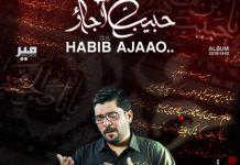 Mir Hasan Mir 2017 mp3 Nohay Free Download | Karbala Walay